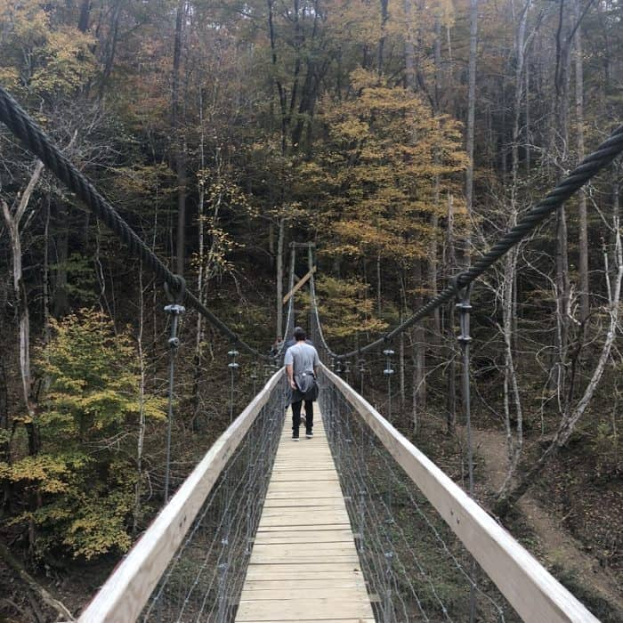 sheltowee trace suspension bridge at Red River Gorge