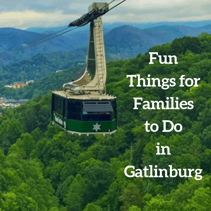 Fun Things for Families to Do in Gatlinburg