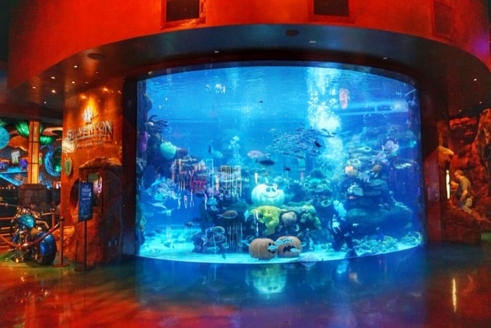 aquarium-las-vegas-silverton-casino
