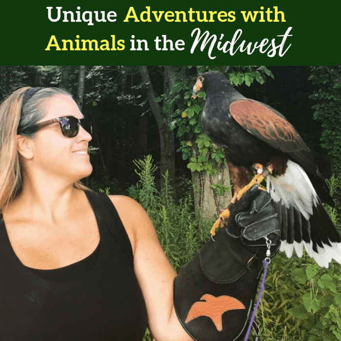 unique-adventures-animals-midwest-adventure-mom-blog