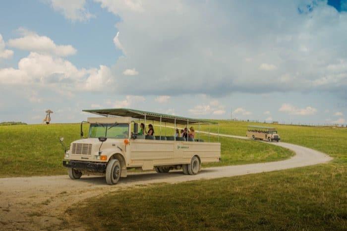 open-air-safari-tour-wilds-cumberland-ohio-adventure-mom-blog