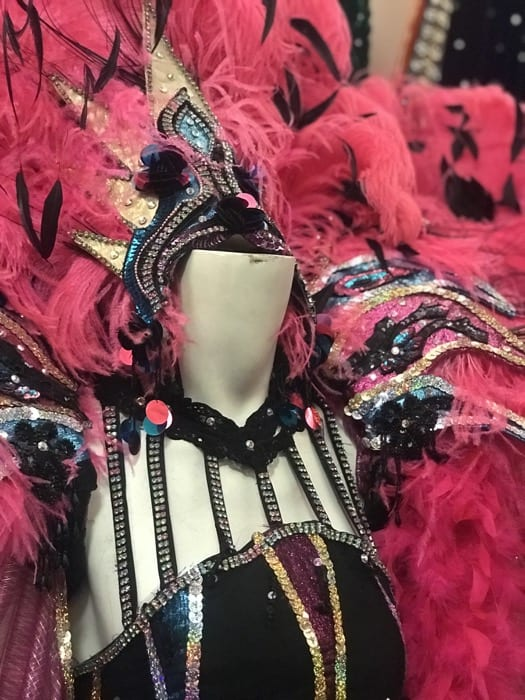 mardi-gras-museum-imperial-calcasieu-costume-adventure-mom-blog
