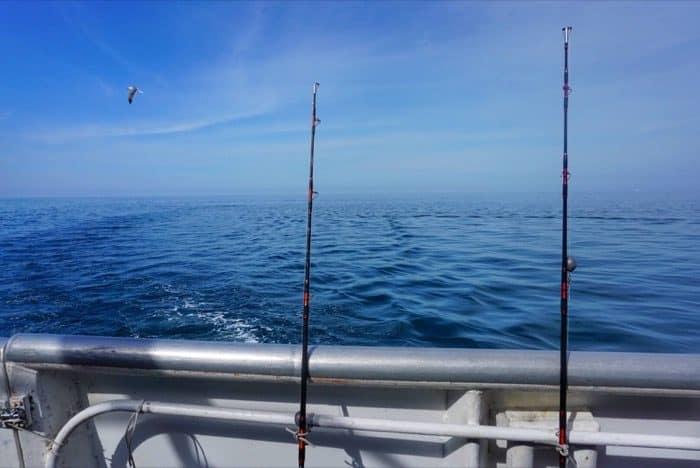 Deep sea fishing in Clearwater Florida