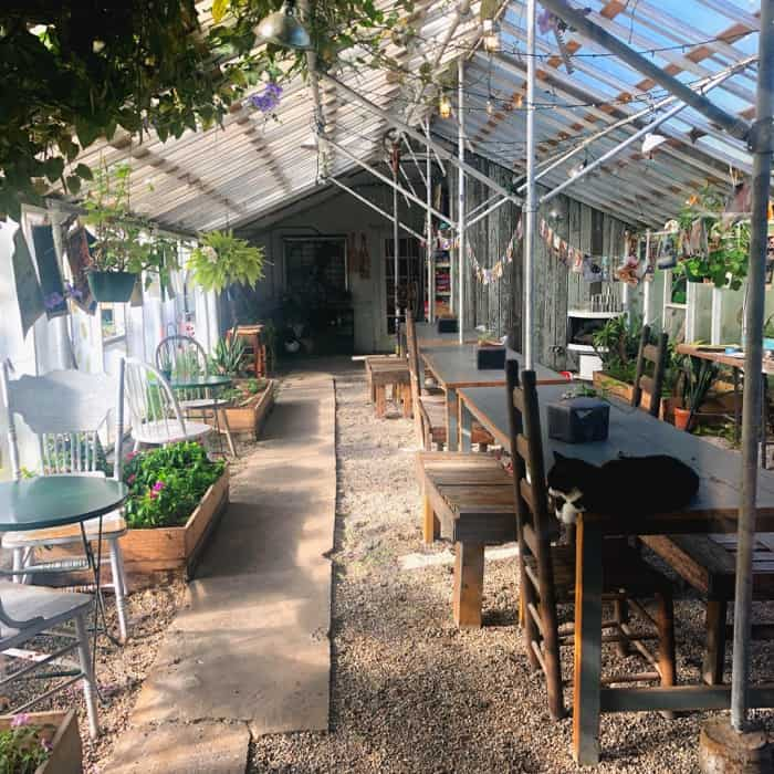 Dining Area of The Greenhouse on Porter in Ocean Springs, MS