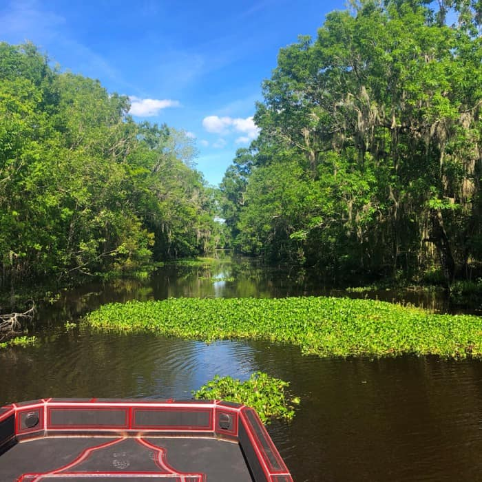 Airboat tour with RJ Molinere of History Channel's Swamp People