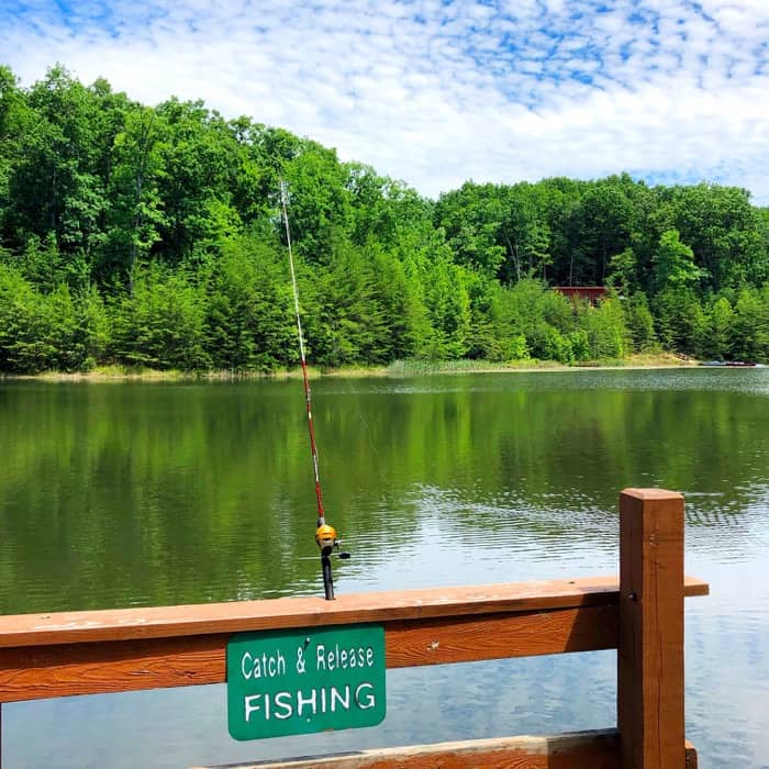catch and release fishing at Cliffview Resort