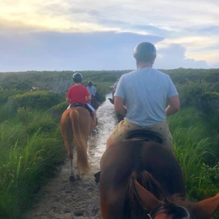 Equine Adventures Horseback Tour Outer Banks