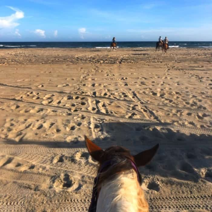 Equine Adventures Horseback Tour in the Outer Banks
