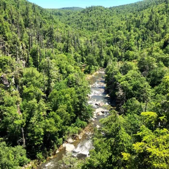 another perspective of Linville Falls
