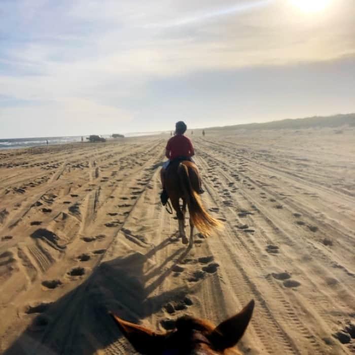 horseback riding on the beach Equine Adventures Horseback Tour
