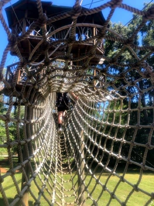 tunnel to Beanstalk Zip Line Journey at Catawba Meadows Park