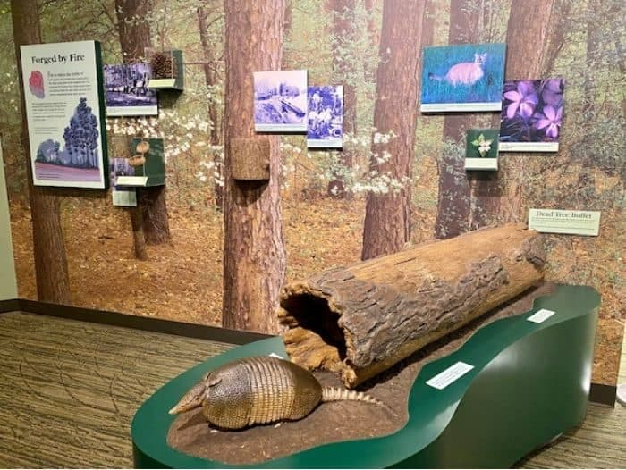 Big Thicket National Preserve Visitors Center