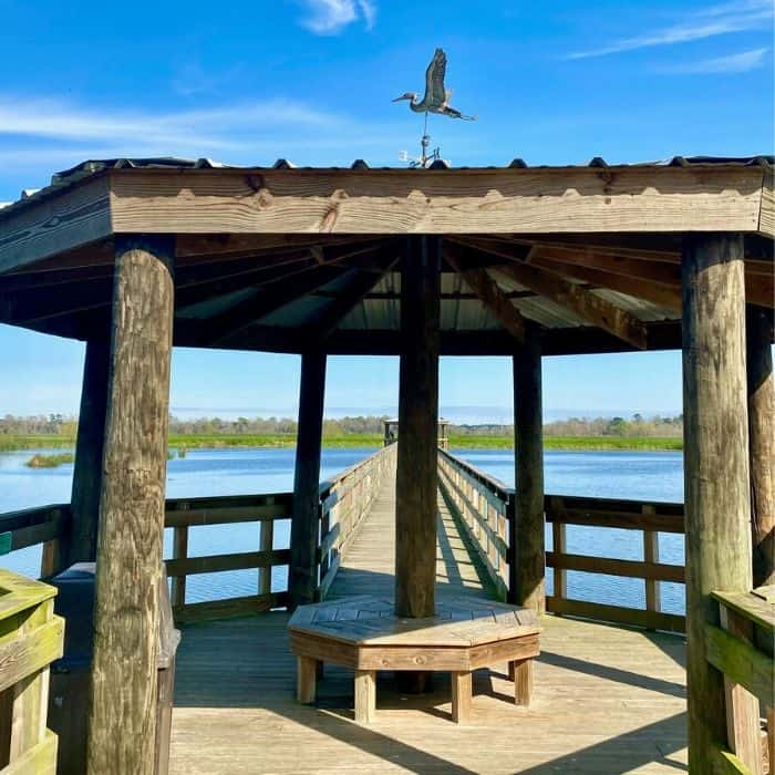 Cattail Marsh Scenic Wetlands and Boardwalk in Beaumont Texas