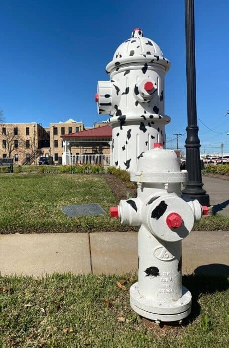 Giant dalmatian spotted fire hydrant in Beaumont Texas