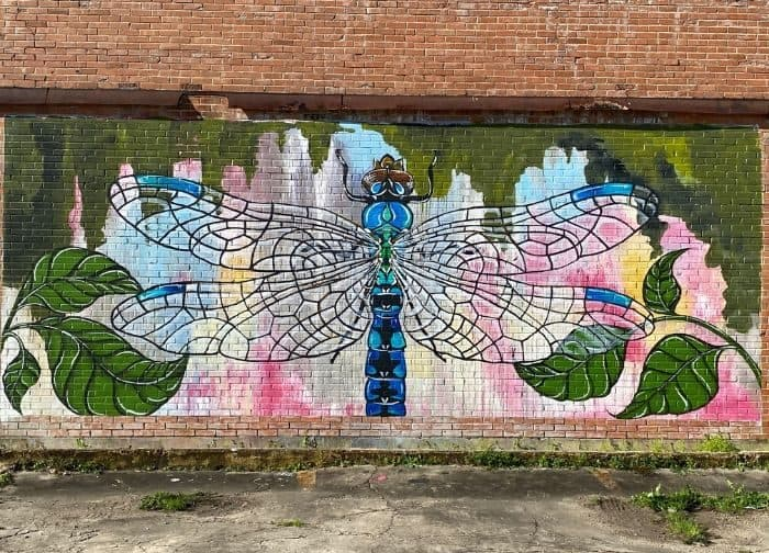 DRAGONFLY MURAL BY ARTIST BETTY SMITH