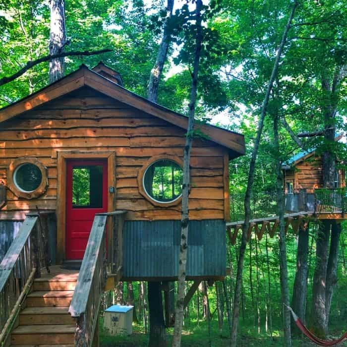 Adventures in a Treehouse Rental from EarthJoy Tree Adventures