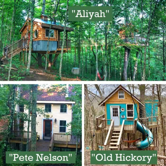 Stay in a Treehouse from EarthJoy Tree Adventures