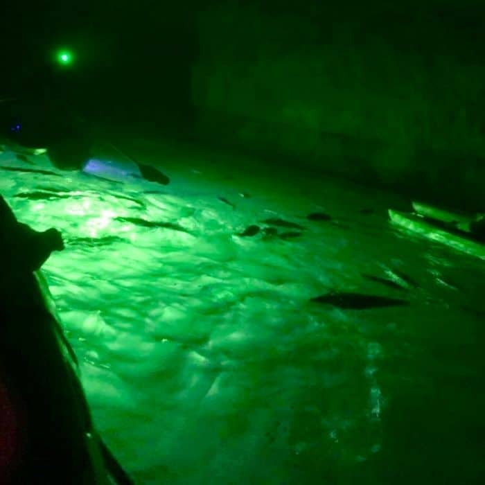 Go Kayaking in a Cave with The Gorge Underground