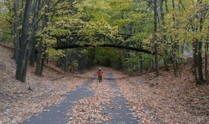 little boy riding a bike in the fall