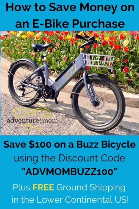Save Money on an E-Bike Purchase Buzz Bicycle
