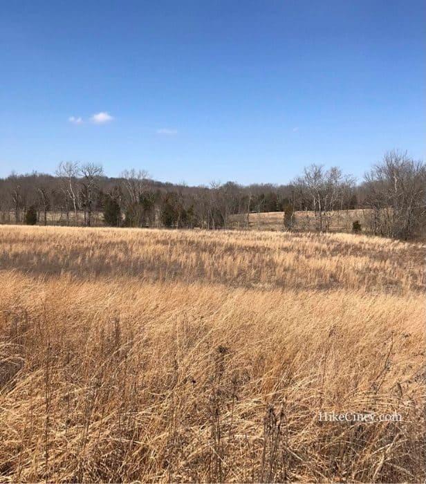 Chaparral Prairie in Ohio