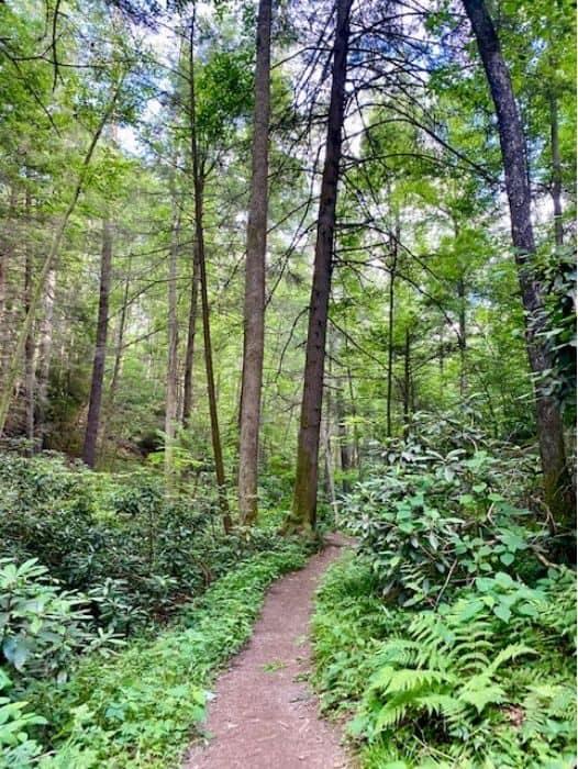 Rock Bridge Trail Loop Hike