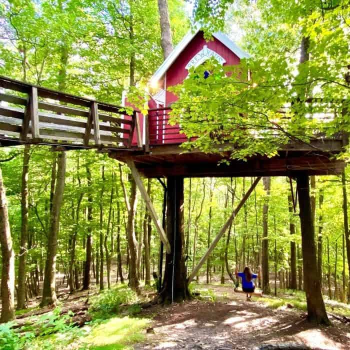 swing below the Little Red Treehouse at the Mohicans