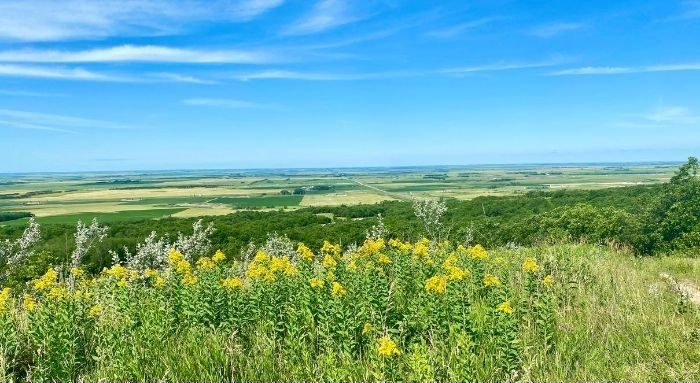 view from Mystical Horizons in North Dakota