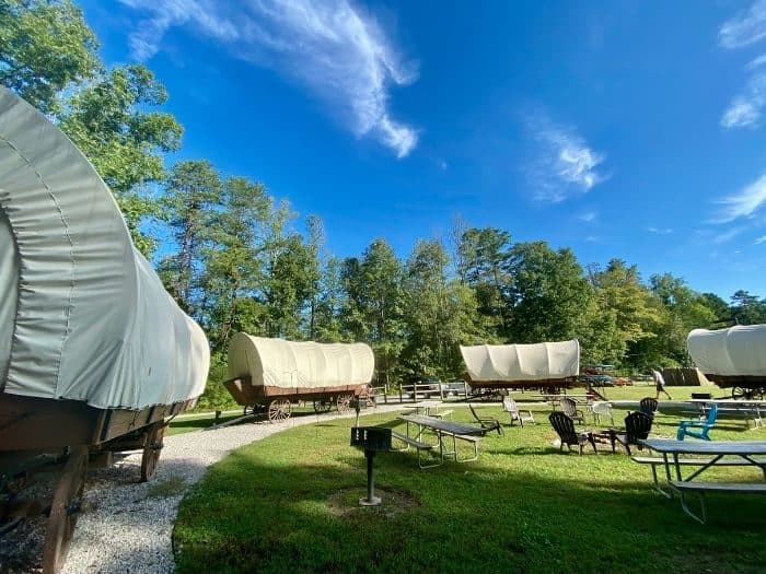 Covered wagons at Sheltowee Trace Adventure Resort in Kentucky