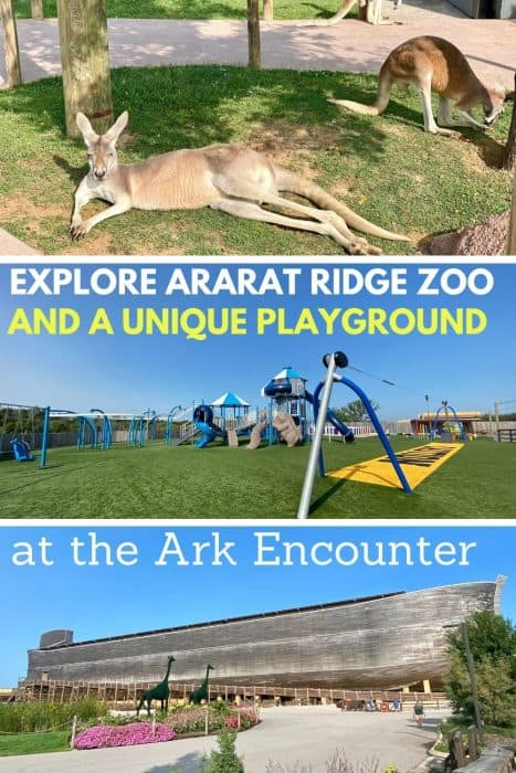 Explore Ararat Ridge Zoo and a Unique Playground at the Ark Encounter