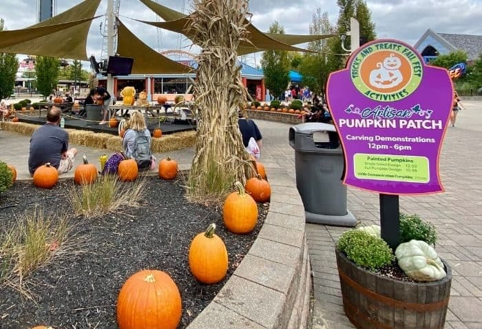 Pumpkin Patch Carving demos at Kings Island