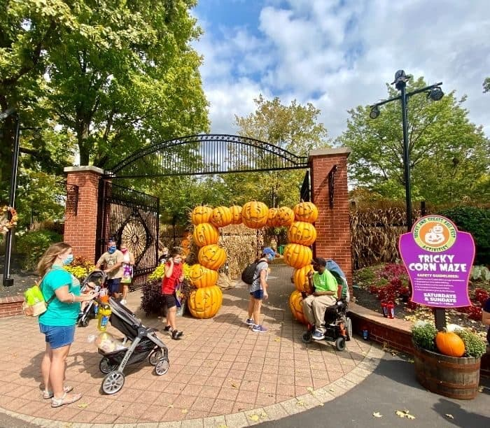 Tricky Corn Maze at Tricks or Treats Fall Fest at Kings Island