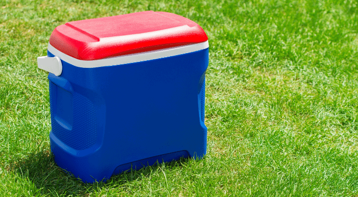 cooler for drinks