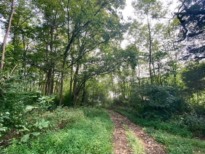 hiking trail at Hidden Lake Farm