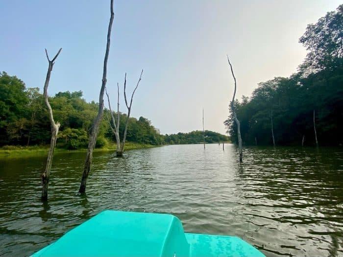 paddleboat on the lake at Hidden Lake Farm