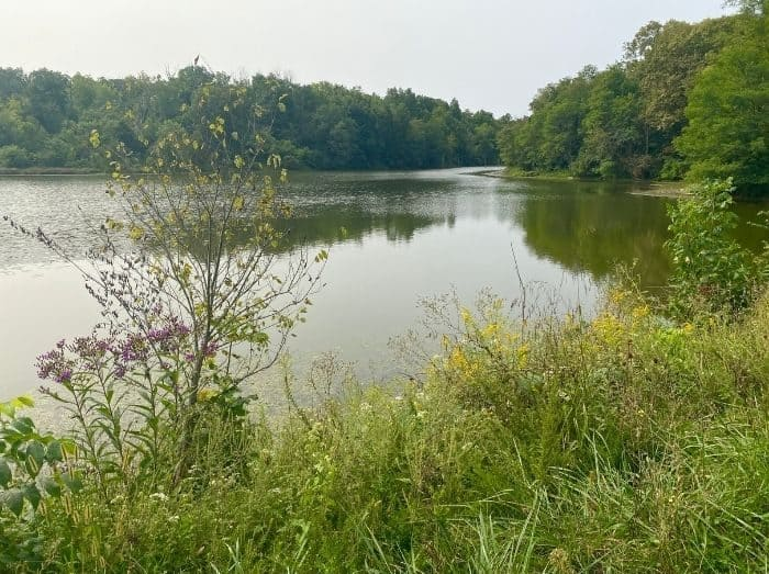 view of the water at Hidden Lake Farm