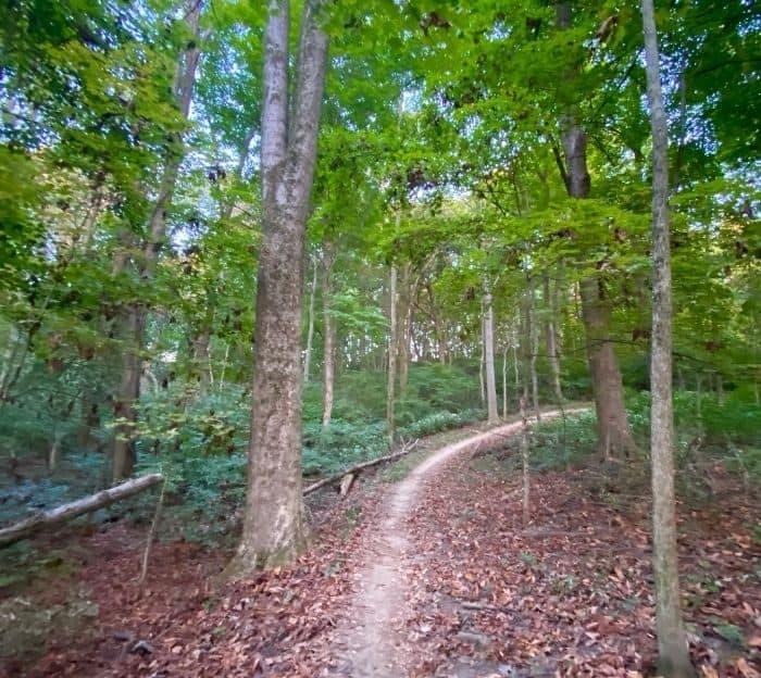 Mountain-Biking-Trails-and-Hiking-trails-at-Devou-Park-