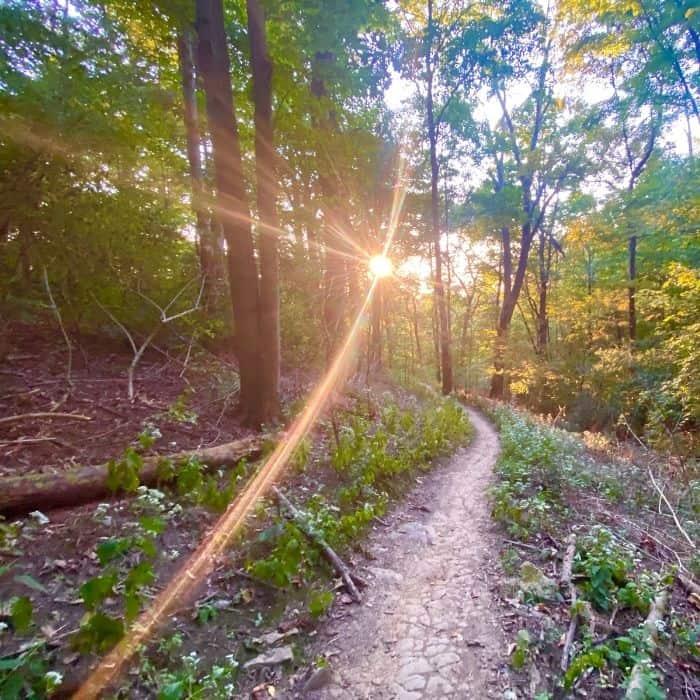 Mountain Biking Trails and Hiking trails at Devou Park