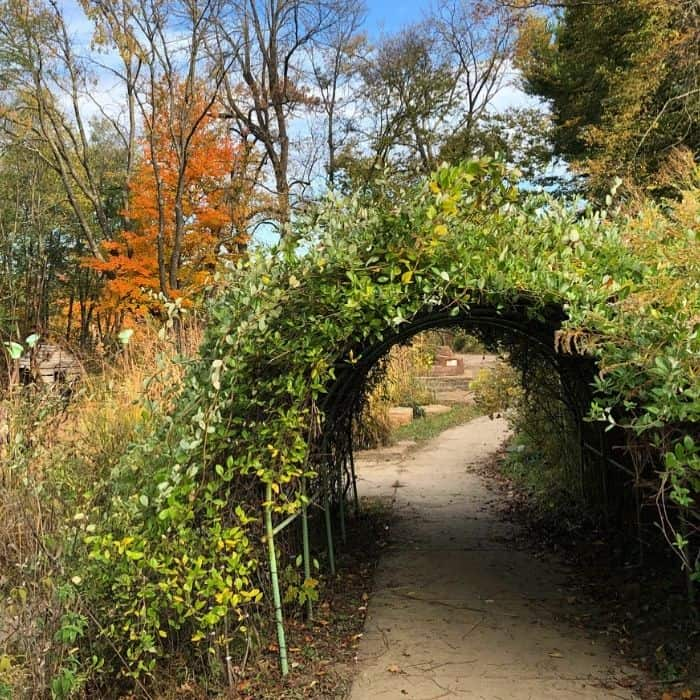 Nature play at the Behringer-Crawford Museum