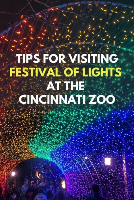 Tips for visiting the Festival of Lights at the Cincinnati Zoo
