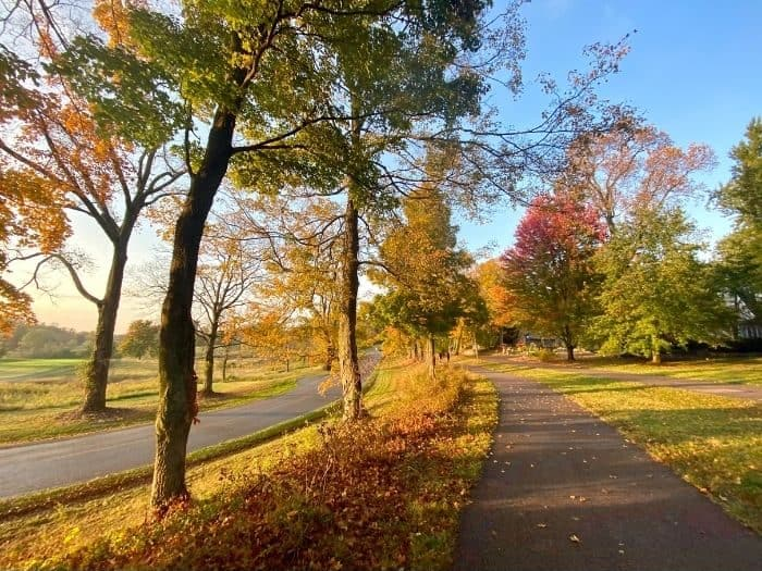 walking path at Devou Park