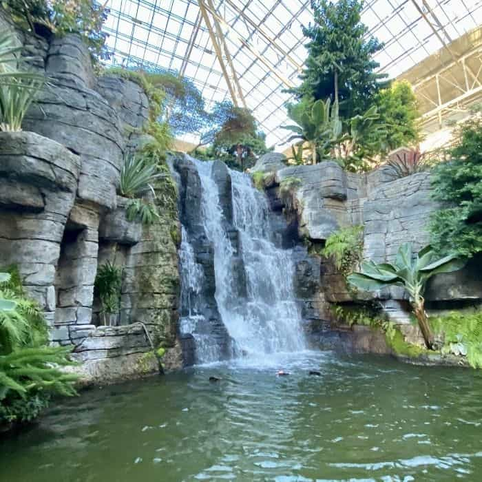 waterfall at Gaylord Opryland Resort in Nashville TN