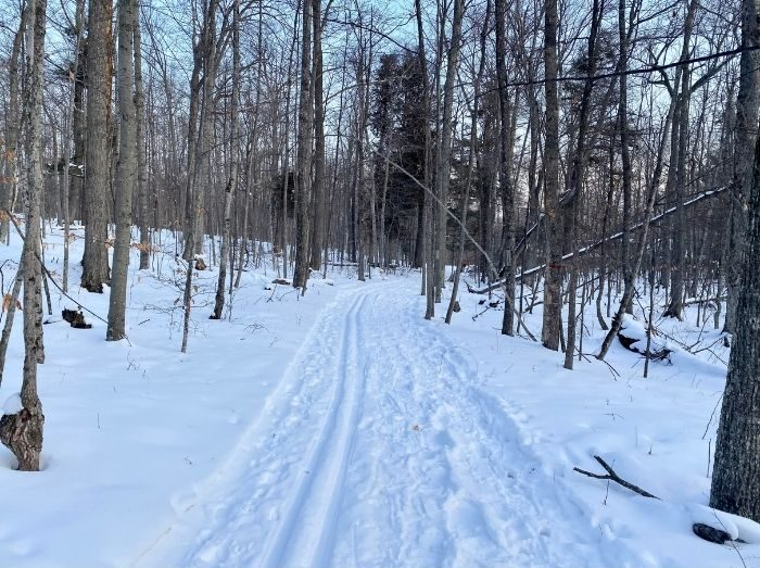 Rushes Wilderness Preserve Trail in the winter