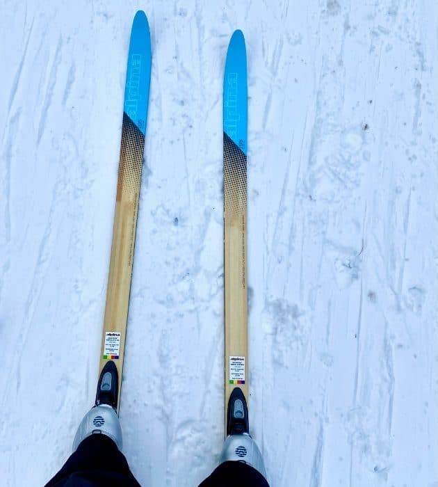 cross country skiing in Peninsula State Park