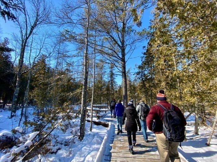 scenic hike at The Ridges Sanctuary