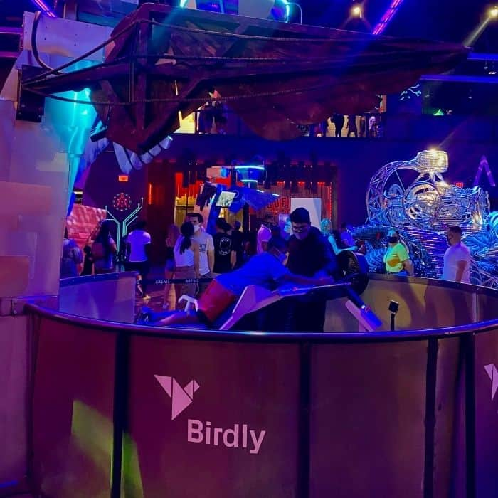 Birdly flight simulator
