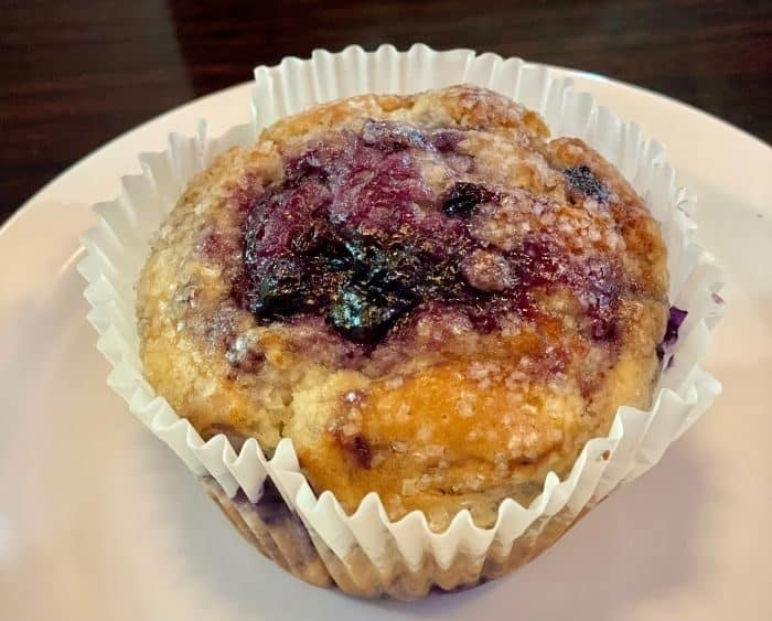 blueberry muffin at BuzzCatz Coffee & Sweets
