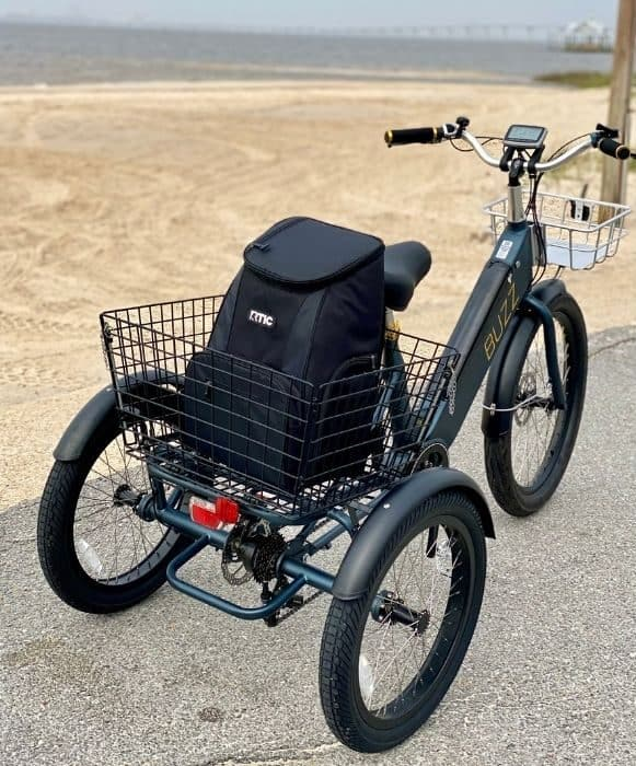 cooler in basket for the Buzz Electric Tricycle