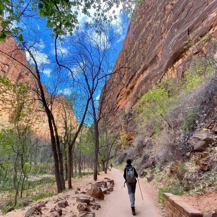 paved trail to the Narrows at Zion National Park