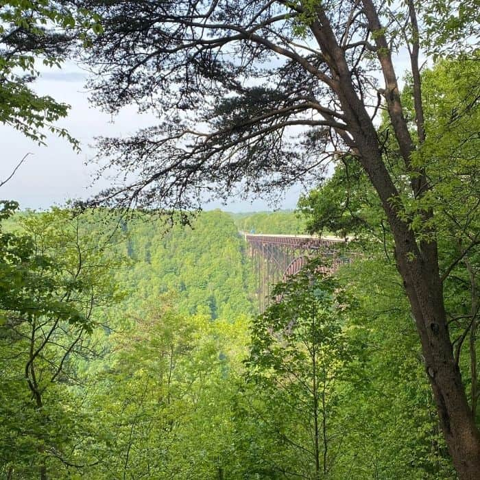 view of New River Gorge from Bridge Canyon Rim Overlook Boardwalk Trail